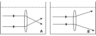 figura_53.jpg