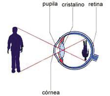 figura_58.jpg