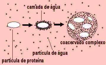 aula_10_img03.jpg