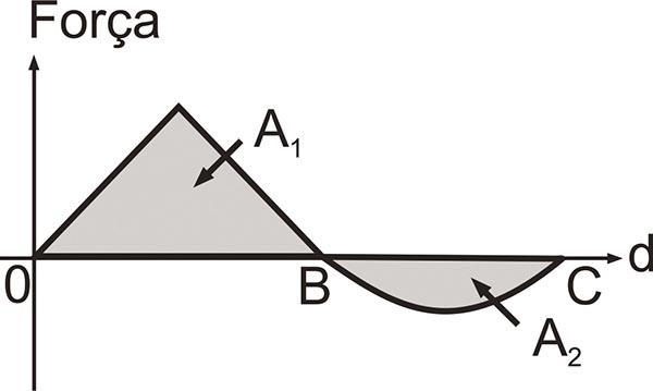 figura_11.jpg