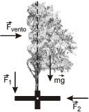figura_40-b.jpg