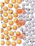 Moléculas em maior agitação produzem calor - Termoquímica