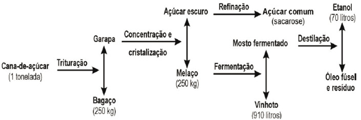 figura_51.jpg