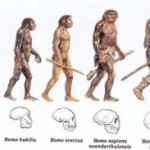 Biologia Enem – Revise sobre Evolução para mandar bem na prova