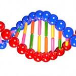 Biologia: Introdução à Genética com aulas Khan Academy!