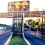 Bauru (SP) – Escolas com melhores e piores notas no Resultado Enem