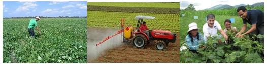 Engenharia Agrícola e Eng. Agronômica – Notas de Corte no Sisu 2014