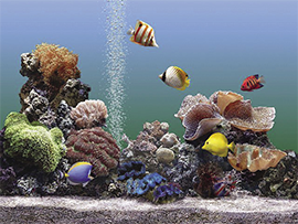 Biologia Enem 2014