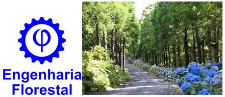 Engenharia Florestal - Notas de Corte Enem Sisu 2014