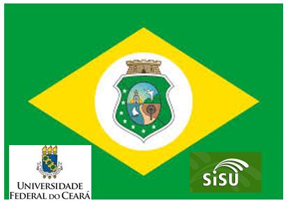 ufc + bandeira