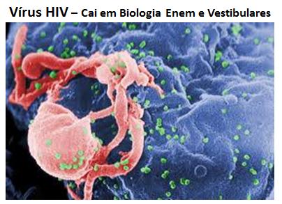 O que é um vírus HIV