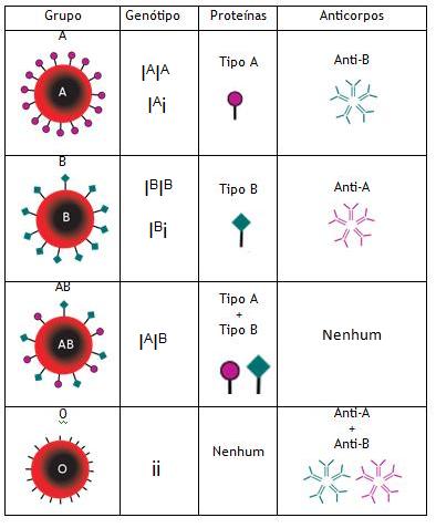 Biologia - Sistema ABO