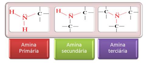 Química - Aminas