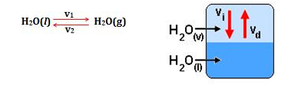 Química - Equilíbrio Químico