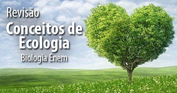 os 7 Conceitos Fundamentais da Ecologia