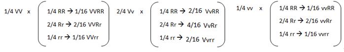 Cálculo de probabilidade de coloração