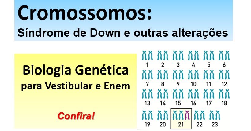 Apologise, analises cromossomas geneticos something is