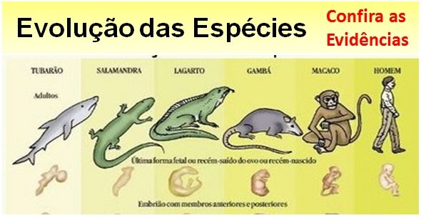 Evidências sobre a Evolução das Espécies