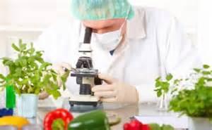 engenharia alimentos
