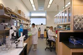 Engenharia Biomédica Biomedicina