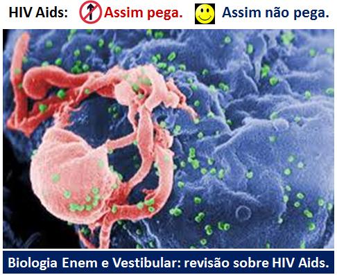 141ba9623 Métodos Contraceptivos - Simulado Enem Online de Biologia com 10 ...