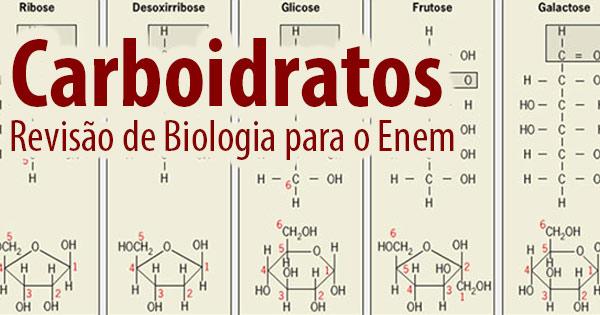 Carboidratos – Revisão de Biologia para o Enem