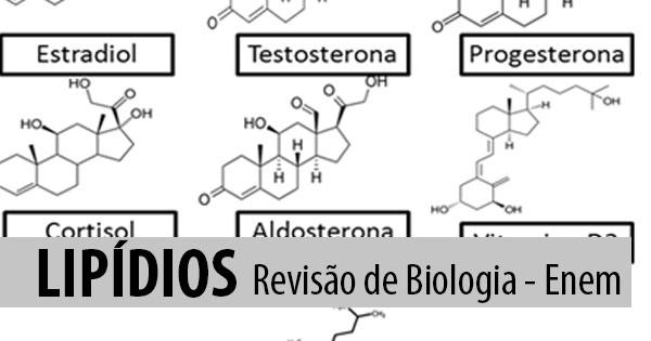 Lipídios – Gorduras e óleos – Revisão de Biologia Enem