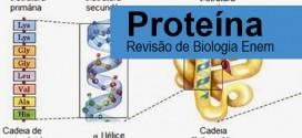 Proteínas – Revisão de Biologia Enem e Vestibular