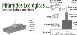 piramides-ecologicas