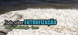 eutrofizacao