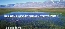 Tudo sobre os grandes biomas terrestres! (Parte 1) – Biologia Enem