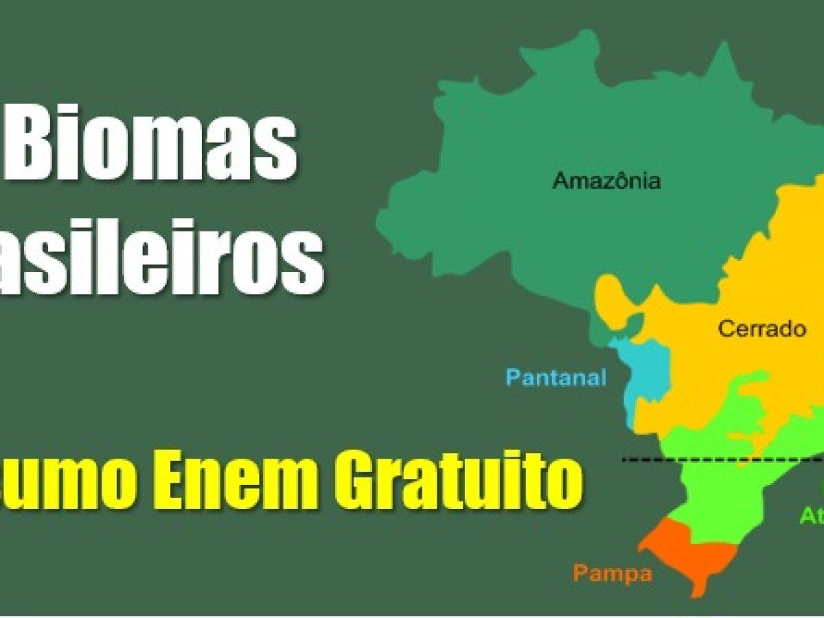Os Seis Biomas Brasileiros Resumo Com Simulado Enem Encceja
