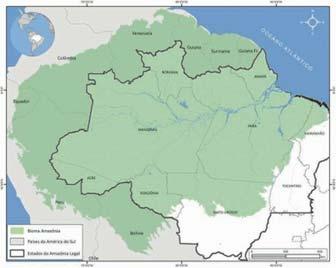 Bioma Flores Amazônica