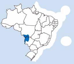 Biomas do Pantanal