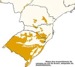 Biomas do Sul do Brasil