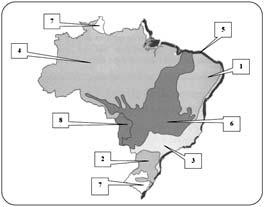 Biomas Braisleiros - Questão 1