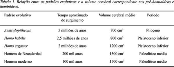 Os hominídeos, suas principais espécies e características