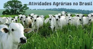 Atividades Agrárias no Brasil
