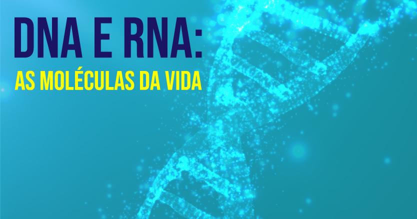 resumo de DNA e RNA