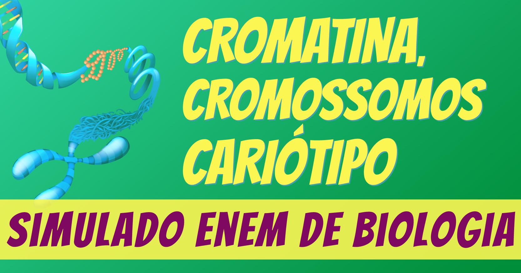simulado de cromatina, cromossomos e cariótipo