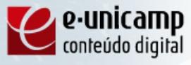 Unicamp e-Unicamp