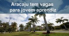 Aracaju tem 16 vagas de emprego