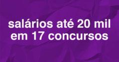Sul tem 229 vagas abertas em 17 concursos